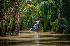 Mekong Delta Royalty Free Stock Images