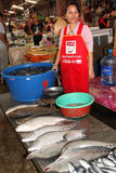 Mekong fish to sell Stock Photo