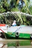 Mekong-Fluss Lizenzfreie Stockfotos