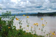 Mekong River Arkivbilder