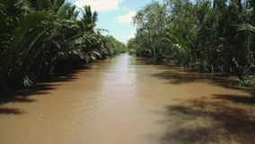 Mekong River i Vietnam, South East Asia stock video