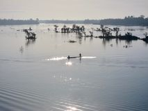 In the Mekong River. 4000 islands, Laos Stock Photography