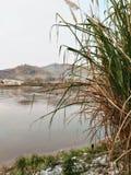 Mekong rivier Royalty-vrije Stock Foto's