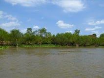 Mekong Rivier deltavietnam Stock Foto's