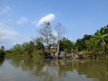 Mekong Rivier deltavietnam Royalty-vrije Stock Foto