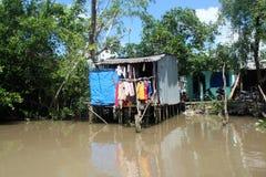 Mekong Rivierdelta Royalty-vrije Stock Afbeeldingen