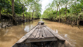 Mekong, Vietnam - November 29, 2015: Riding the mekong delta cruise with daily trips to local sights stock image
