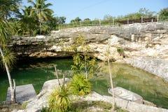 Meksyk Mały Cenote Zdjęcia Royalty Free