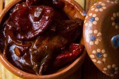 Meksykańscy chipotle pieprze zdjęcia stock