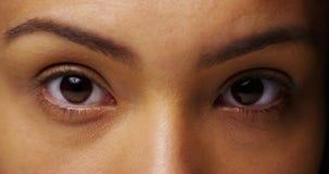 Meksykańscy duszni oczy patrzeje kamerę zdjęcie royalty free