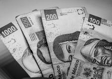 Meksykańscy rachunki różne wartości zdjęcie royalty free