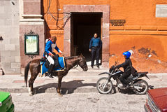 Meksykańska Dal Fotografia Royalty Free
