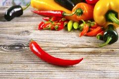 Meksykański gorący chili pieprzy mieszanki papryki poblano kolorowy serra Fotografia Stock
