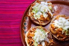 Meksykański karmowy cebulkowy tinga chipotle obraz stock