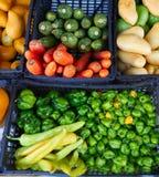 Meksykanów warzyw chili marchewki targowa grula Zdjęcia Stock