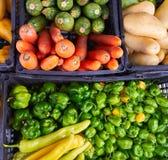 Meksykanów warzyw chili marchewki targowa grula Obraz Stock