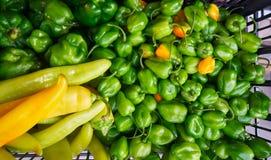 Meksykanów warzyw chili targowy habanero Fotografia Stock