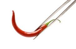 meksykanin chillipepper Zdjęcia Stock