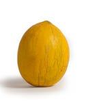 Melão amarelo Imagem de Stock