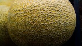 Melão do buah da textura da pele foto de stock royalty free
