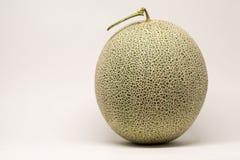 Melão do cantalupo Foto de Stock