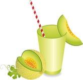 Melão Juice Summer Refreshment do cantalupo ilustração do vetor