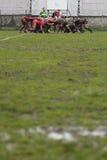 Melé del rugbi en campo fangoso Foto de archivo libre de regalías