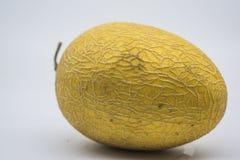 Melón amarillo de oro maduro creciente de Hami del chino fotografía de archivo