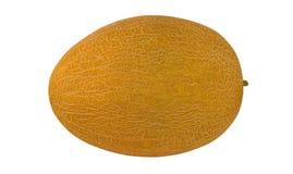 Melón amarillo maduro Imágenes de archivo libres de regalías