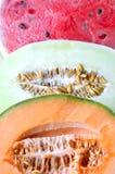 Melón del cantalupo Foto de archivo libre de regalías
