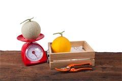 Melón en caja de madera, melón en el pesaje Fotos de archivo