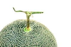 melón en el fondo blanco, un conjunto del cantalupo de frutas del melón del cantalupo aisladas en el fondo blanco imagen de archivo