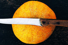 Melón fresco del cantalupo en un fondo oscuro con el cuchillo imagen de archivo