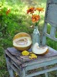 Melón y flores Foto de archivo libre de regalías
