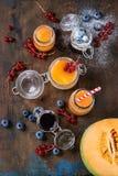 Melón y smoothie de los arándanos foto de archivo libre de regalías