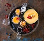 Melón y smoothie de los arándanos fotografía de archivo