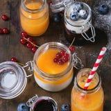 Melón y smoothie de los arándanos fotos de archivo libres de regalías