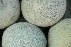 Melões imagem de stock