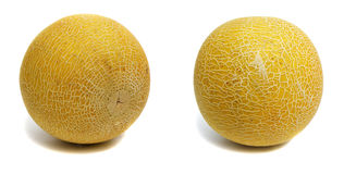 Melões Foto de Stock
