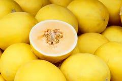 Melões amarelos Imagens de Stock