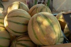 Melões de Cavaillon, melões redondos maduros do cantalupo do mel dos charentais no mercado local em Provence, França imagem de stock