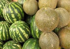 Melões e melancias Fotos de Stock