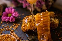 Mel do gotejamento de um dipper de madeira nos favos de mel Imagem de Stock