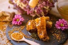 Mel do gotejamento de um dipper de madeira nos favos de mel saudáveis Foto de Stock Royalty Free