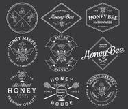 Mel e abelhas brancos Imagem de Stock Royalty Free