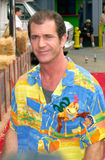 Mel Gibson Royalty Free Stock Images