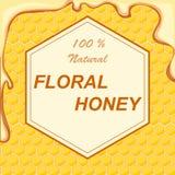 Mel natural da flor em um quadro contra um fundo dos favos de mel O conceito do mel natural da flor ilustração do vetor