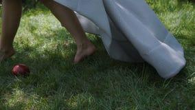 Mela bianca come la neve della presa da erba stock footage