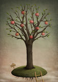 Mela dell'albero Fotografia Stock