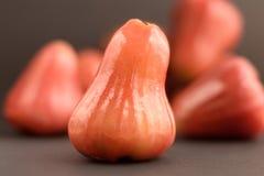 Mela della cera o frutta della campana Fotografie Stock Libere da Diritti